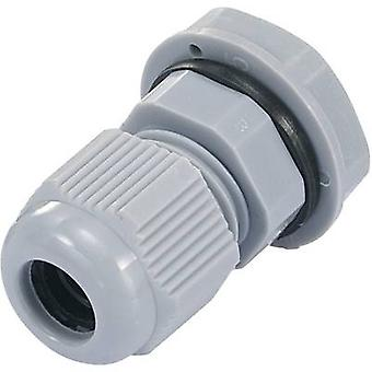 Cable gland PG7 Polyamide Silver-grey (RAL 7001)