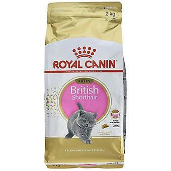 Royal Canin Cat Food Feline Breed British Shorthair Kitten 400 g
