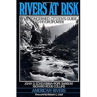 Rivers at Risk: Concerned Citizen's Guide to Hydropower