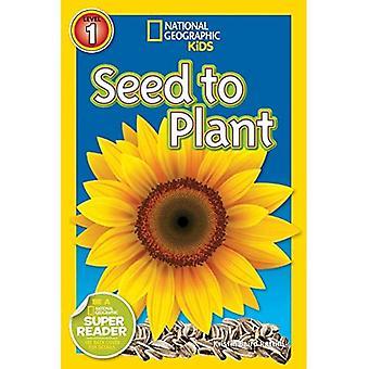 Semilla a la planta (lectores geográficos nacionales: nivel 1)