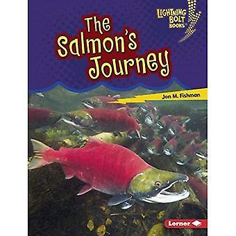 Viaggio del salmone (Lightning Bolt libri incredibile migratori)