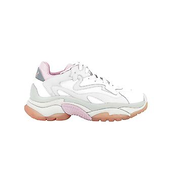 Ash White/pink Leather Sneakers