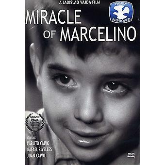 Miracle of Marcelino [DVD] USA import