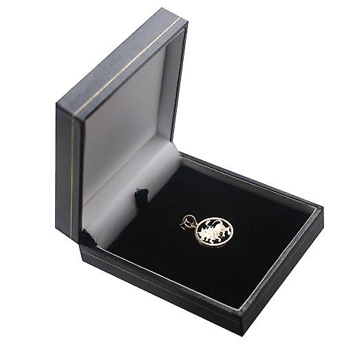 9ct Gold 11mm pierced Zodiac pendant Leo