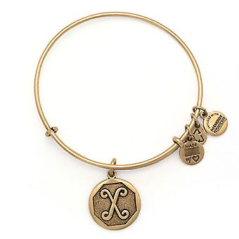 Alex en Ani eerste X Gold Bangle A13EB14XG