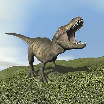 Tyrannosaurus Rex Dinosaurier zu Fuß auf dem Rasen Poster Print