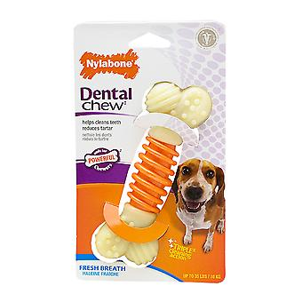 Nylabone Pro Action Dental Bone Medium