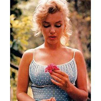 Marilyn Monroe flores Poster Poster Print
