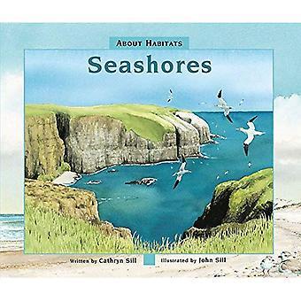 Seashores (About Habitats)