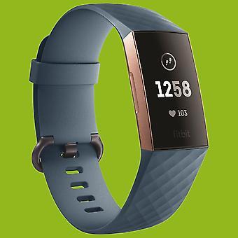 For Fitbit charge 3 plast/silikon armbånd for menn/størrelse L cyan-Blåklokke