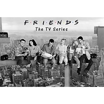 Poster - Studio B - Friends - Skyscraper 36x24