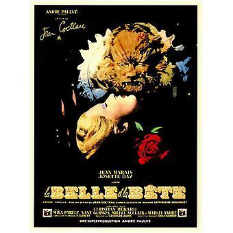 Belleza y el bestia Movie Poster (11 x 17)