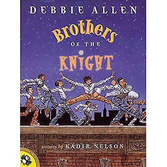 Broeders van de Ridder (Papegaaiduiker prentenboeken)