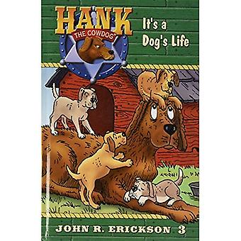 It's a Dog's Life (Hank the Cowdog)