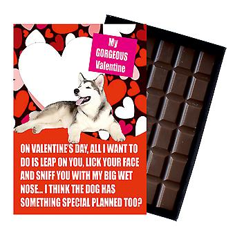 Novelty Chocolate Dog Lover Valentines Day Gift Alaskan Malamute Greeting Card