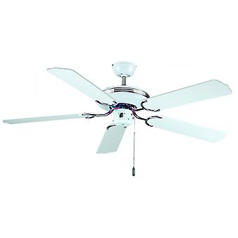 Ceiling Fan - Enjoy Life (BC 824)