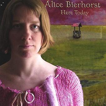 Alice Bierhorst - hier heute [CD] USA import
