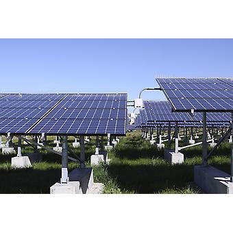 Eine Photovoltaik-Anlage von Solarzellen Poster Print
