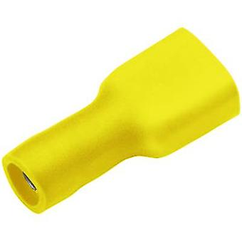 Cimco 180270 Blade receptacle Connector width: 4.8 mm Connector thickness: 0.5 mm 180 ° Insulated Yellow 1 pc(s)