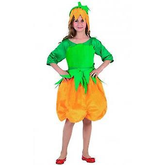 Children's costumes  Pumpkin dress for girls