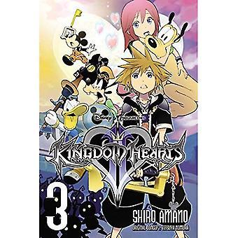 Kingdom Hearts II, Vol. 3