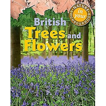 Nature in Your Neighbourhood: British Trees� and Flowers (Nature in Your Neighbourhood)