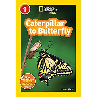 Caterpillar to Butterfly (National Geographic Readers - Level 1)