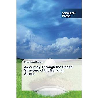 A Journey Through the Capital Structure of the Banking Sector by Giuliani Francesco