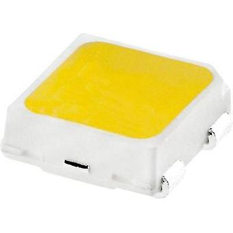HighPower LED Cold white 0.3 W 29 lm 120 °