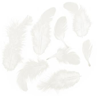 Rooster Plumage Feathers .04oz-White B103W