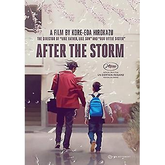 After the Storm [DVD] USA import