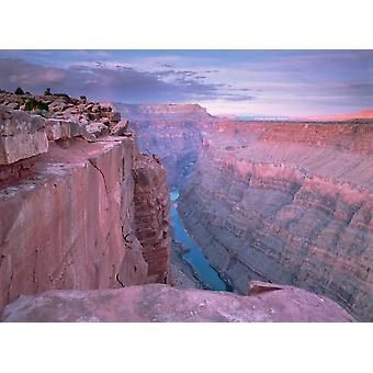 Río Colorado de Toroweap Mirador Gran Cañón de Arizona Poster Print por Tim Fitzharris