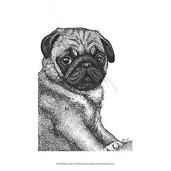 Ralph the Pug Poster Print by Beth Thomas (10 x 13)