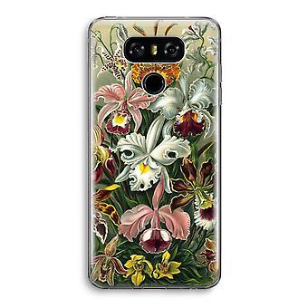 LG G6 Transparent Case - Haeckel Orchidae