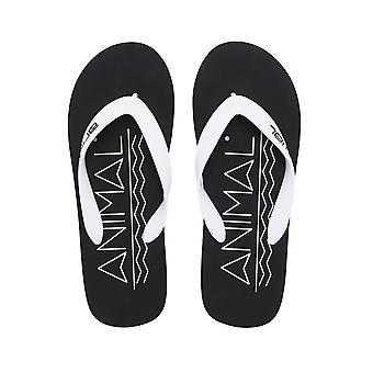 Animal Costaz logoen Flip Flops