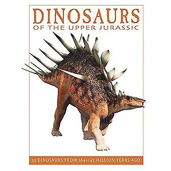 Dinosaurier från övre Jurassic: 25 dinosaurier från 164-145 miljoner år sedan (Firefly dinosaurie-serien)