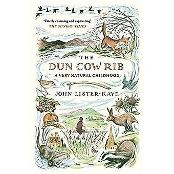 Dun lehmän Rib