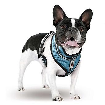Xt-Dog Arnes Summer S (Dogs , Collars, Leads and Harnesses , Harnesses)
