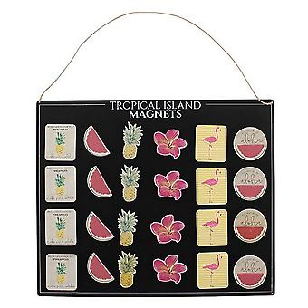 Something Different Tropical Magnets With Display Board (Set Of 36)