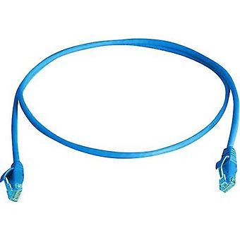 Telegärtner RJ45 Networks Cable CAT 5e U/UTP 0.5 m Sky blue Flame-retardant, Halogen-free