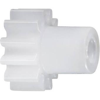 Polyoxymethylen Sporn Zahnrad Reely Modultyp: 0,5 Bohrungsdurchmesser: 4 mm Nr. Zähnezahl: 30
