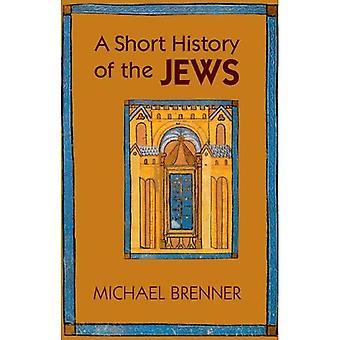 Uma breve história dos judeus