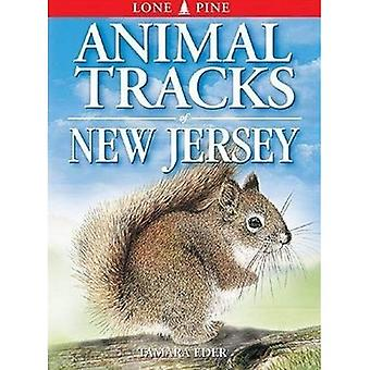 Animal Tracks of New Jersey