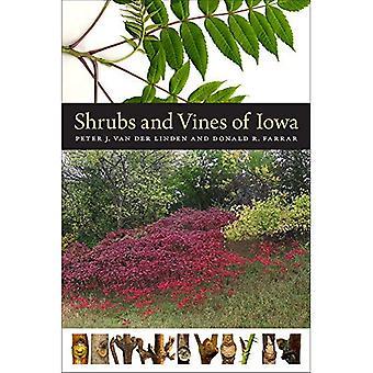 Shrubs and Vines of Iowa (A Bur Oak Guide)