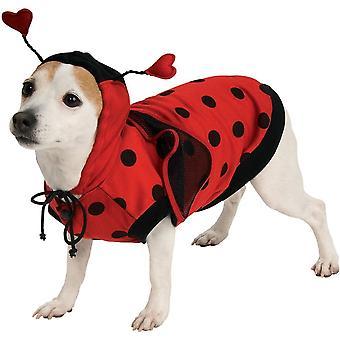 Søt Ladybug Pet bekostning