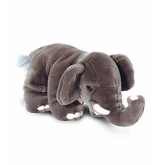 Elefante del bambino Deluxe 25cm
