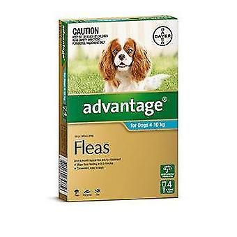 Advantage Aqua 4 Pack Medium Dogs 4-10kg