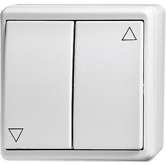 Wall-mount switch Flush mount Kaiser Nienhaus 321112