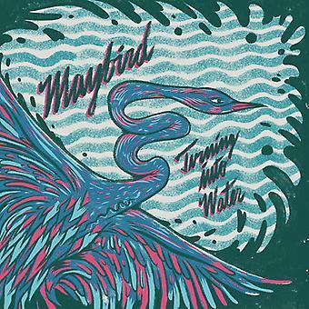 Maybird - Turning Into Water [Vinyl] USA import
