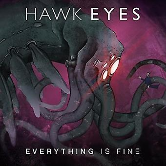 Hawk Eyes - Everything Is Fine [CD] USA import